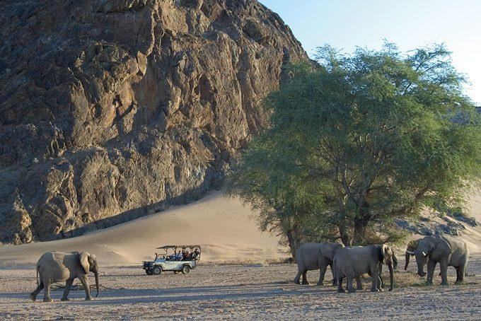 Safari, Damaraland