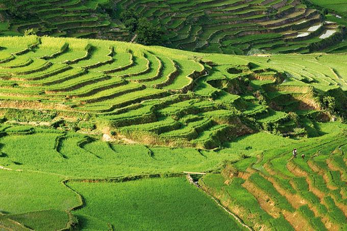 Hochland in Madagaskar