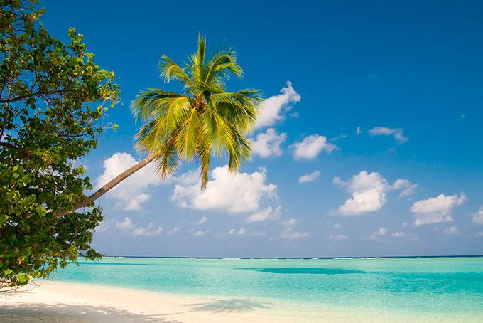 Malediven: Ein sonniger Traum