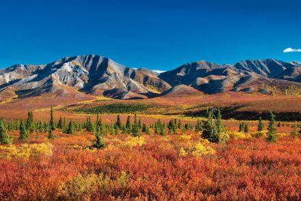 Yukon-Alaska