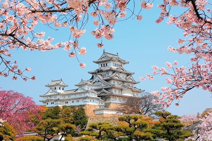 Japon, vert et rouge