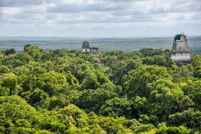 Die Maya Ruinen Tikal mitten im Regenwald