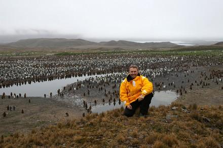 Markus Hofer vor einer Königspinguin-Kolonie auf Südgeorgien