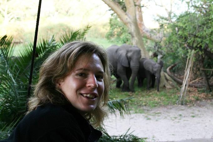 Elefanten beim Camp