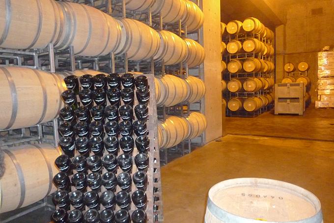 Weinkeller in Mendoza mit Weinprobe