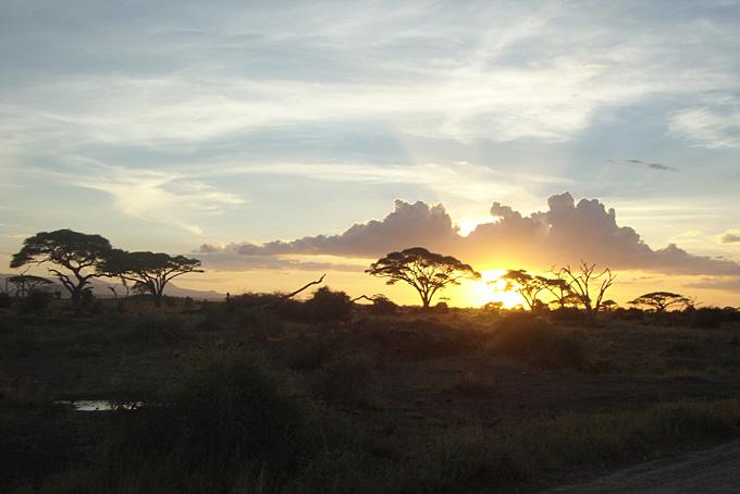 Sonnenuntergang im Amboseli Nationalpark