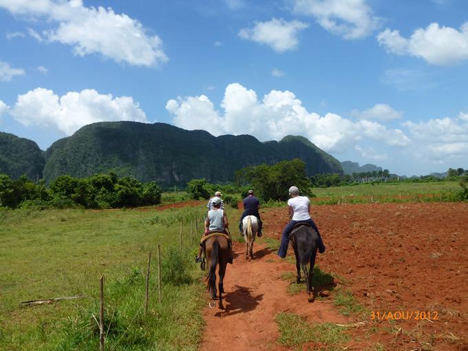 Promenade à cheval en Viñales