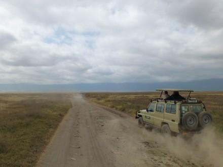 Fahrt durch die Serengeti