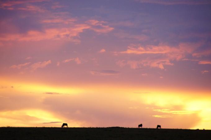 und zuletzt noch ein Sonnenuntergang