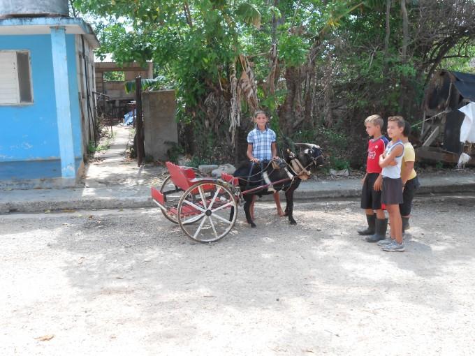 Einheimische mit Ziegen-Kutsche