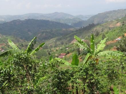 Ruanda, land der tausend Hügel