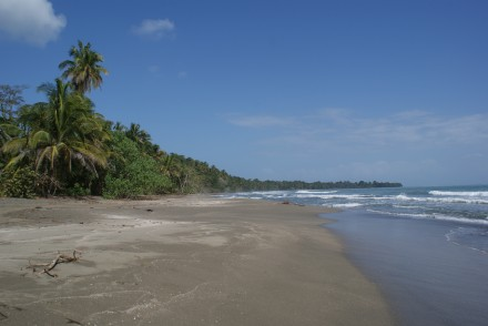 Im Nationalpark von Cahuita