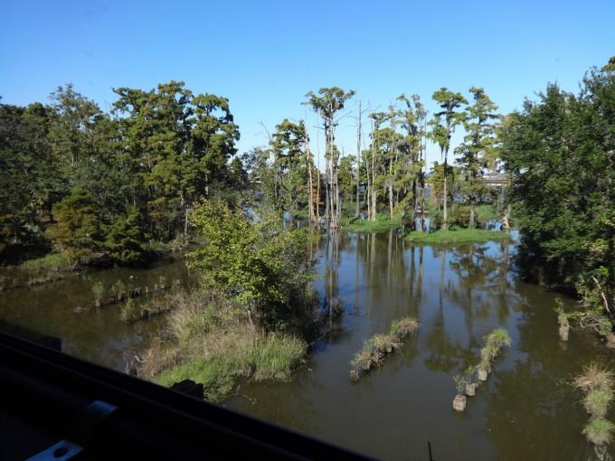 Bayous, Ausblick auf unserer Reise vom Zug aus