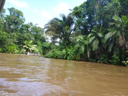 Auf der Bootsfahrt zur Tortuguero-Lodge