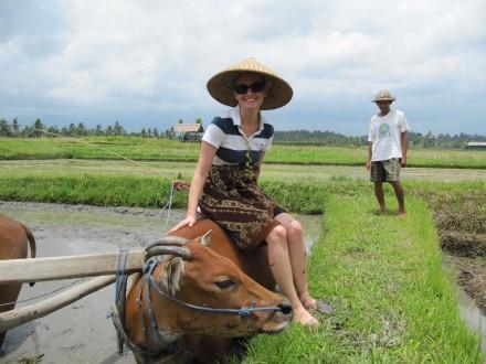 Stefanie Marck dans une rizière