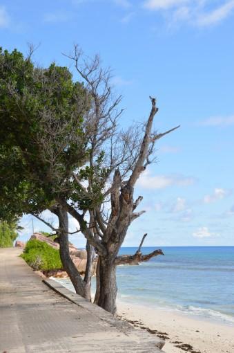 Strand in der Nähe des Hotels Le Domaine de l'Orangeraie