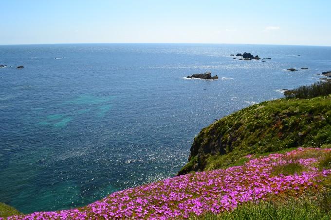 Lizard Island, Cornwall (Copyright: EmPemm @ Flickr)