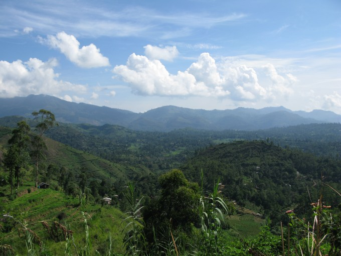 Hochland von Nuwara Eliya