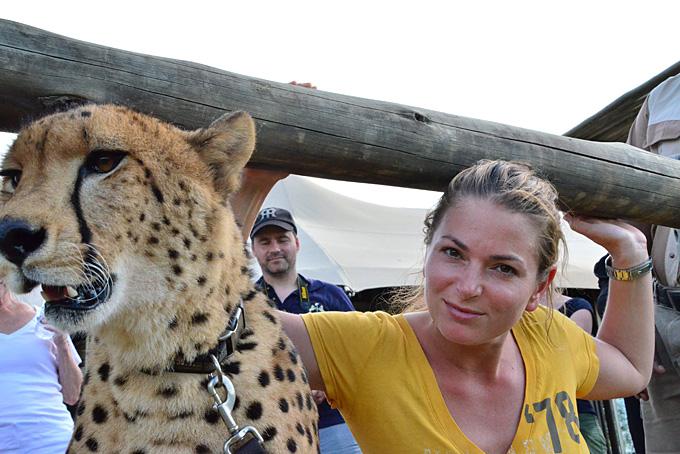 Carmen D'Amico mit einem Geparden