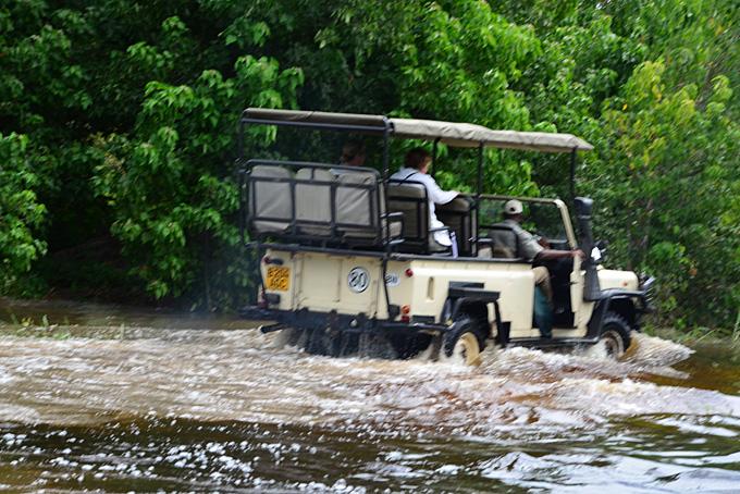 Eines unserer Safari-Fahrzeuge