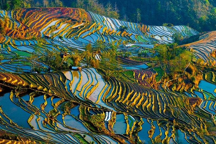 Die Reisterrassen von Yunnan