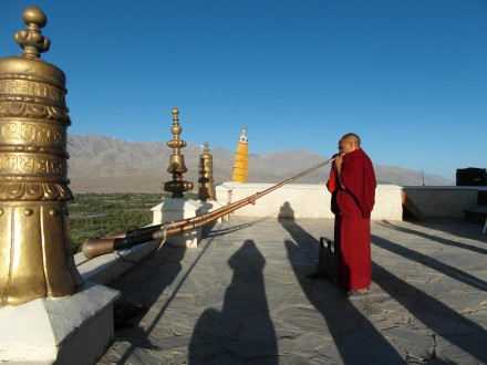 Mönche vom Thiksay Kloster