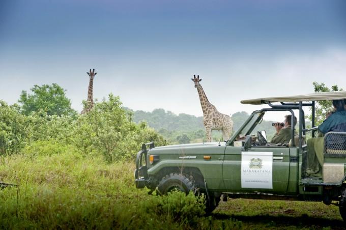 Safari mit der Makakatana Lodge im iSimangaliso Wetland Park