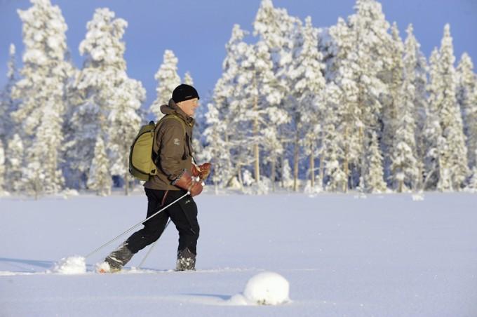 Langlaufen im winterlichen Lappland