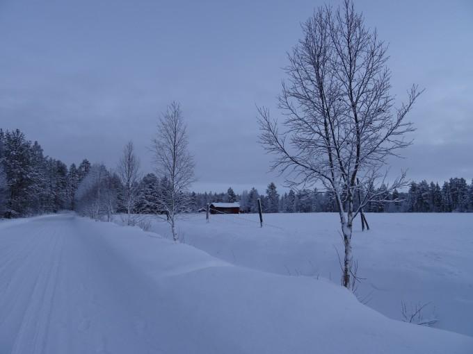 Weihnachtlicher Winterspaziergang