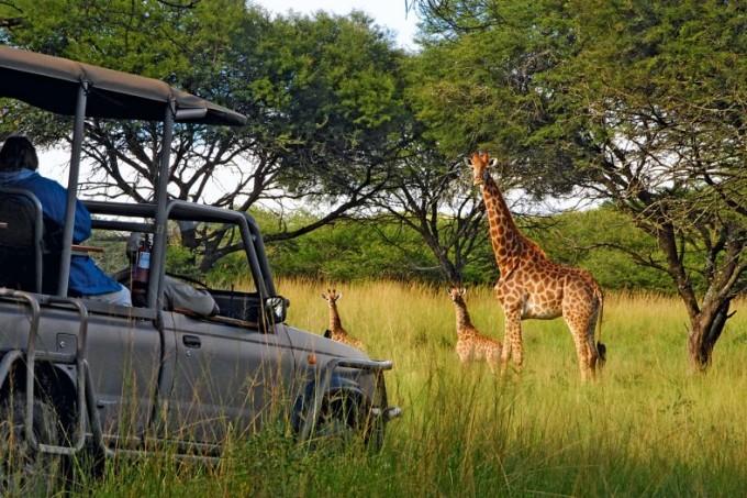 Auf Abenteuer Safari mit dem Karkloof Safari und Spa Hotel