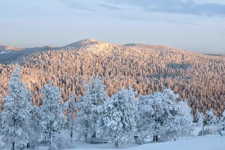 Unvergessliche Momente in Lappland geniessen
