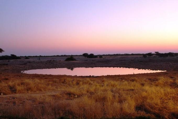 Wasserloch im Etosha Nationalpark