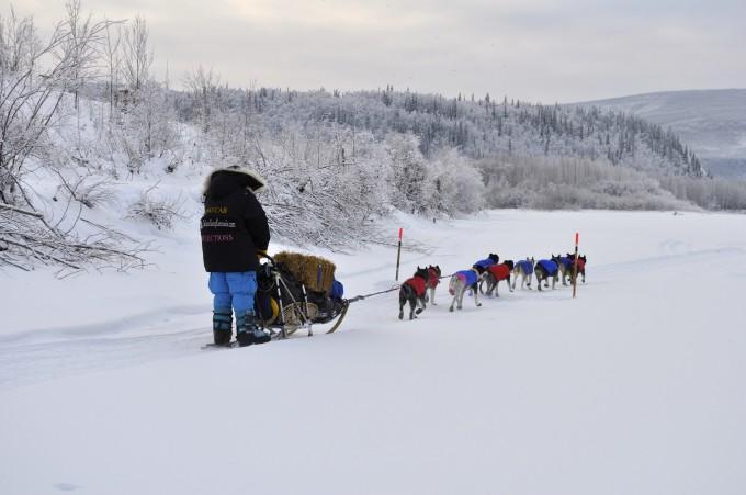 Einer der Yukon Quest Teilnehmer