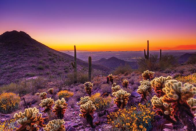 13 conseils pour Tucson et Scottsdale