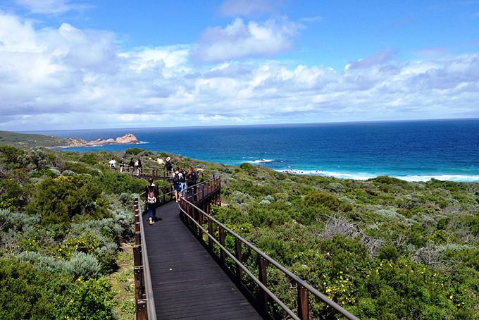 Wandern auf dem Cape to Cape Track