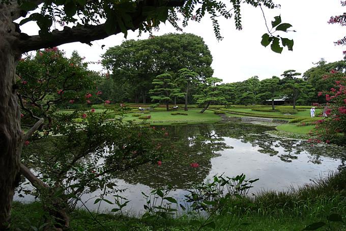 Ein wunderschöner Japanischer Garten