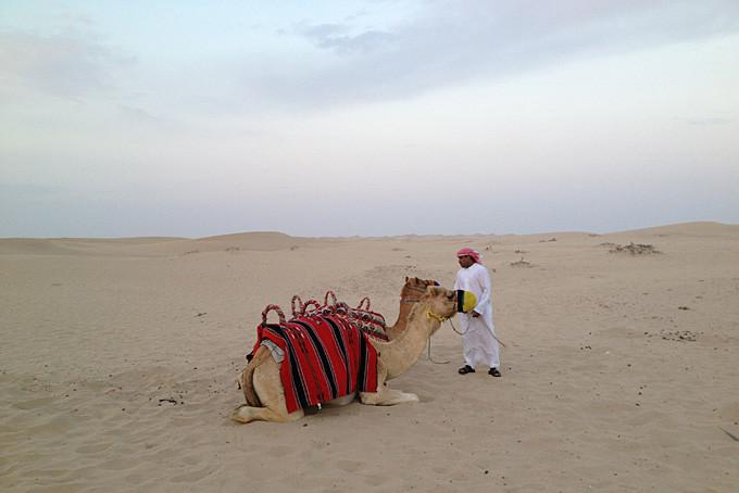 Safari dans le désert