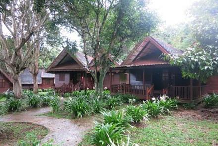 Mutiara Resort Taman Negara