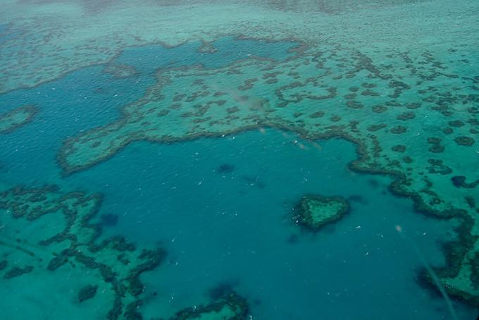 Heli Flug über Heart Reef