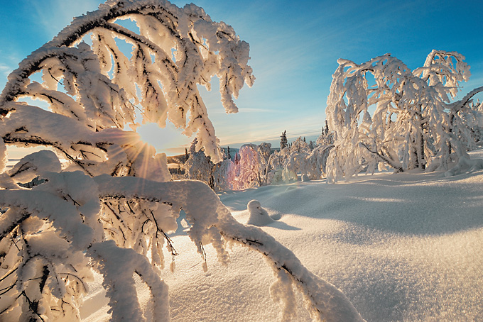 10 conseils pour votre voyage en Laponie