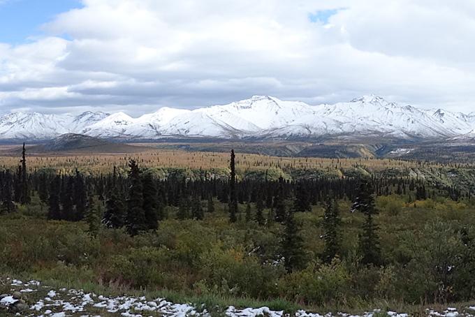 L'Alaska, entre vie sauvage, étendues et merveilles