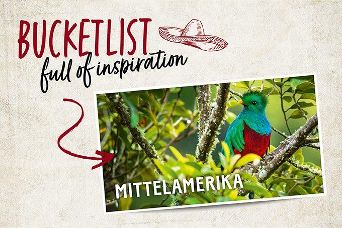 Bucketlist Costa Rica Glamping
