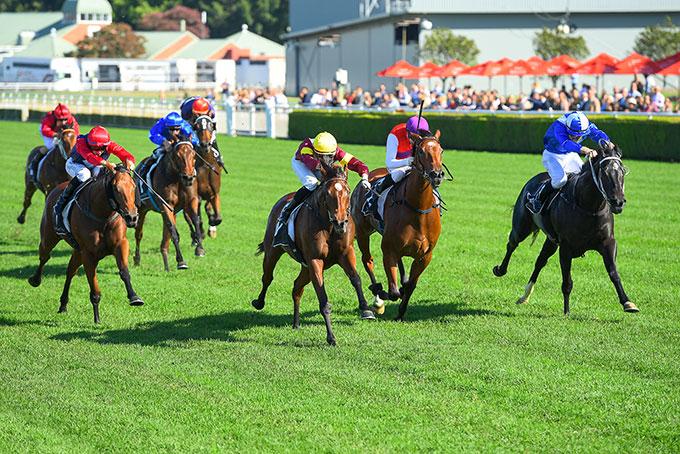 Australien: Prestigeträchtiges Pferderennen «Melbourne Cup»