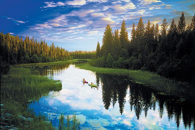Parc national de Prince Albert, la porte du Nord sauvage