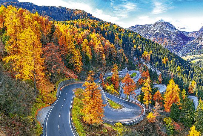 Herbstfarben auf dem Malojapass im Oberengadin