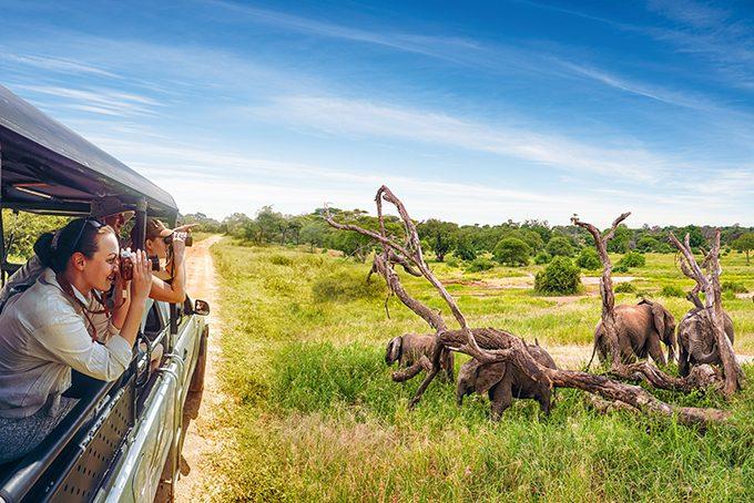 Als Familie auf Safari in der Serengeti, Tansania