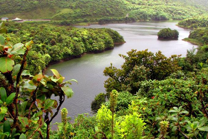 Naturparadies: Dominica