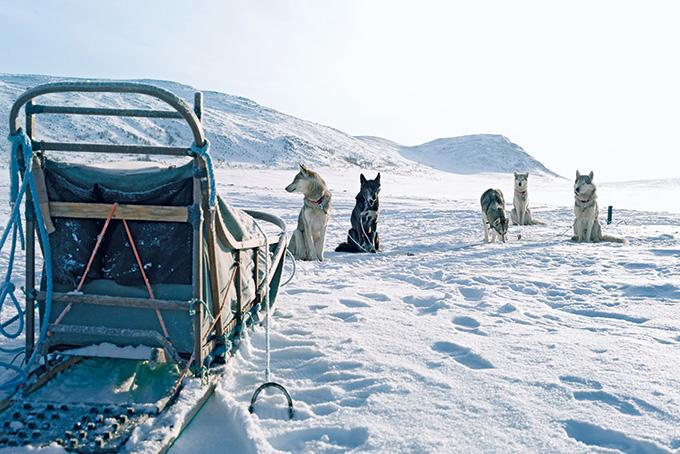 Fünf Gründe, im Winter nach Finnisch Lappland zu reisen