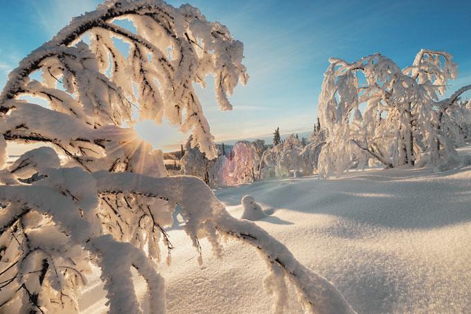 10 Tipps für Ihre Lappland-Reise