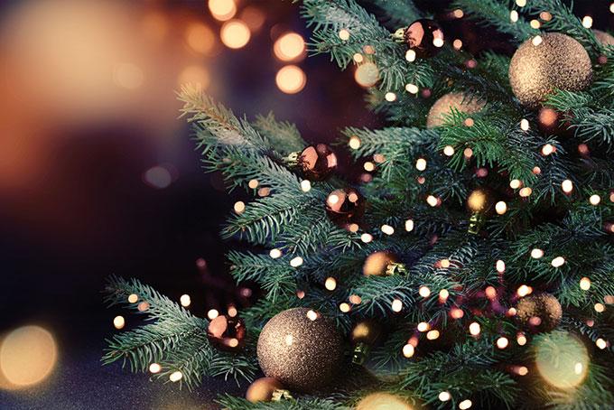 Litauen: Weihnachtsessen ohne Fleisch